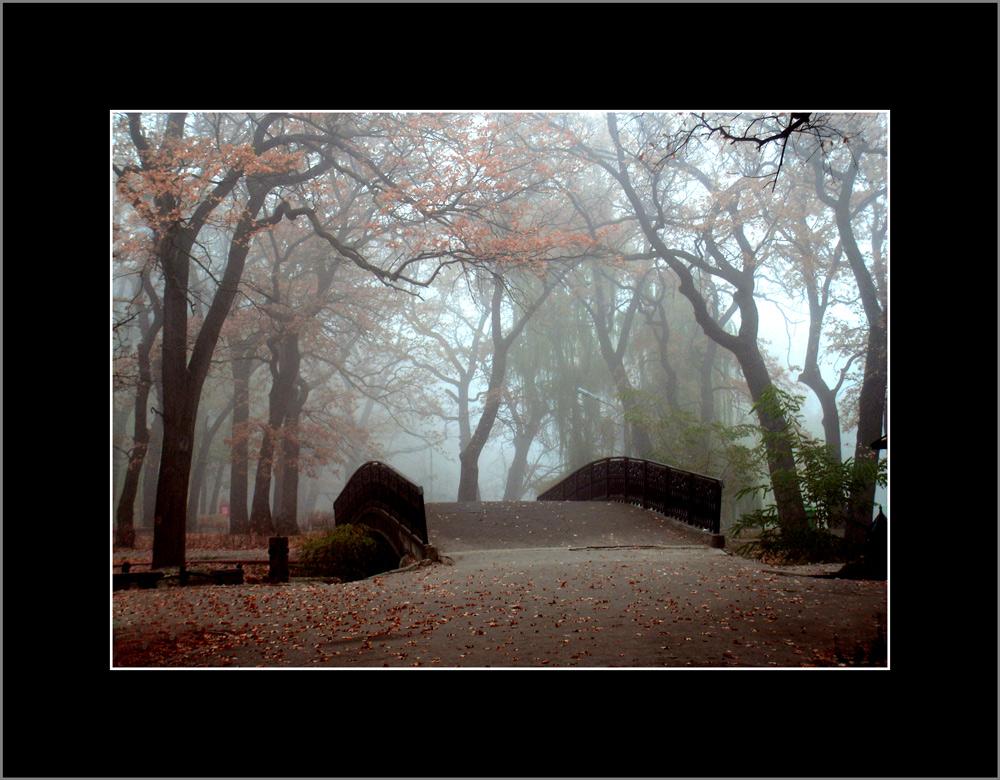 Мосток в парке