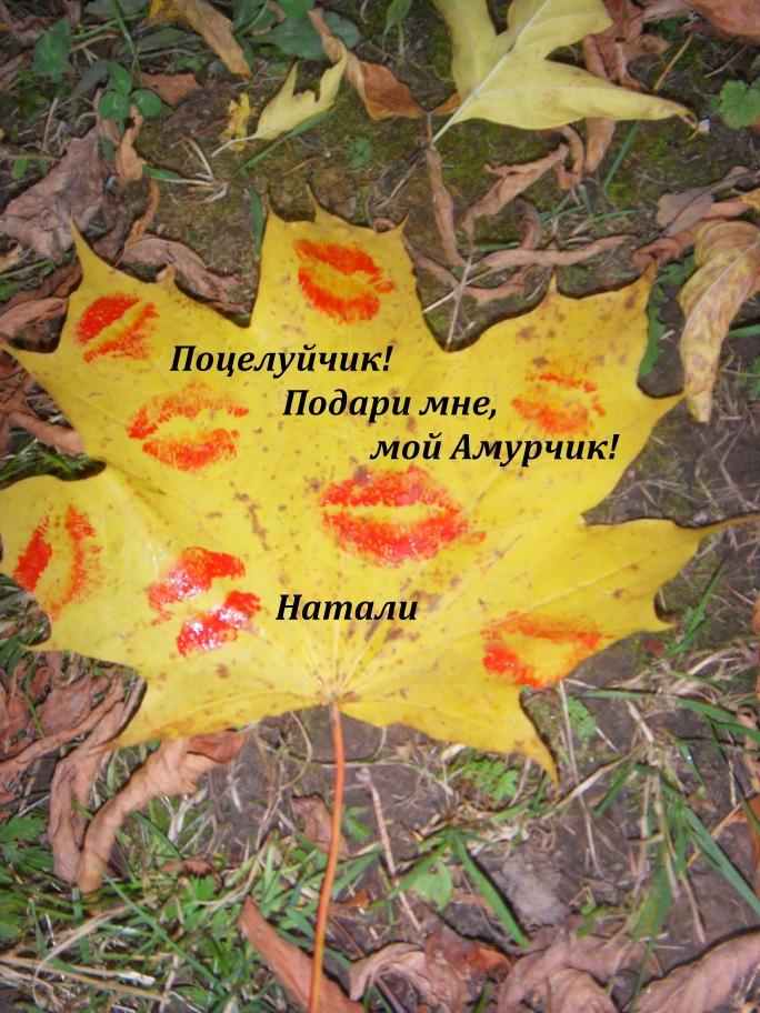 Осенние поцелуйчики
