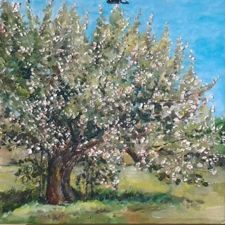 2 яблони